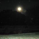Full Moon & Orbs! Feb 2012